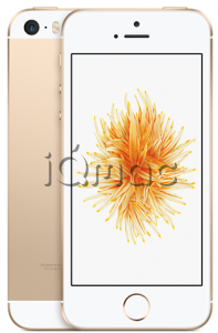 Купить iPhone SE 128Gb Gold