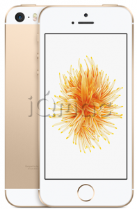 Купить iPhone SE 16Gb Gold