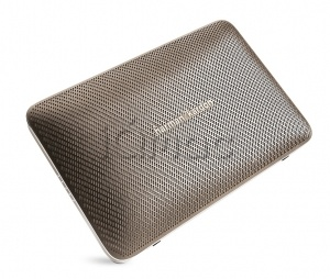 Купить Harman Kardon Esquire 2 Champagne